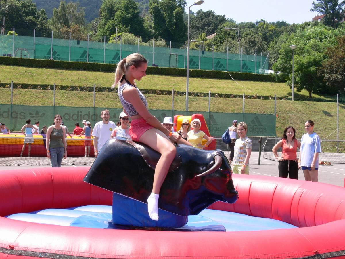 Rodeó bika bérlése